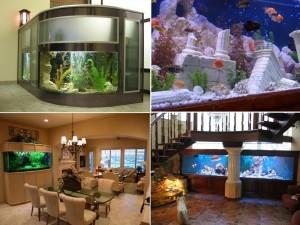 Продажа аквариумов в Санкт-Петербурге