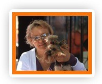 Фотогалерея йорков, фотографии йоркширских терьеров, фото щенков йорка, фото йоркширских терьеров, фото йорков