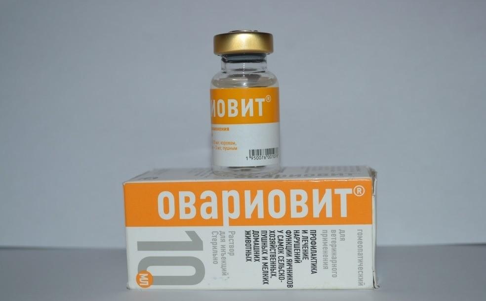 Овариовит