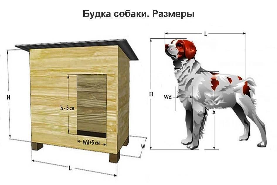 Чертежи собачьи будки своими руками
