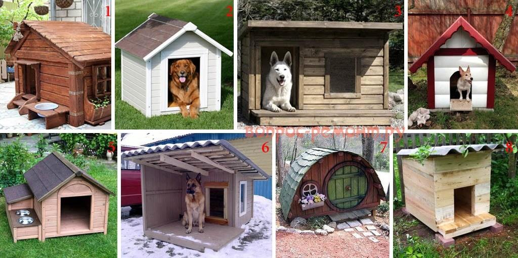 Типы собачьих будок