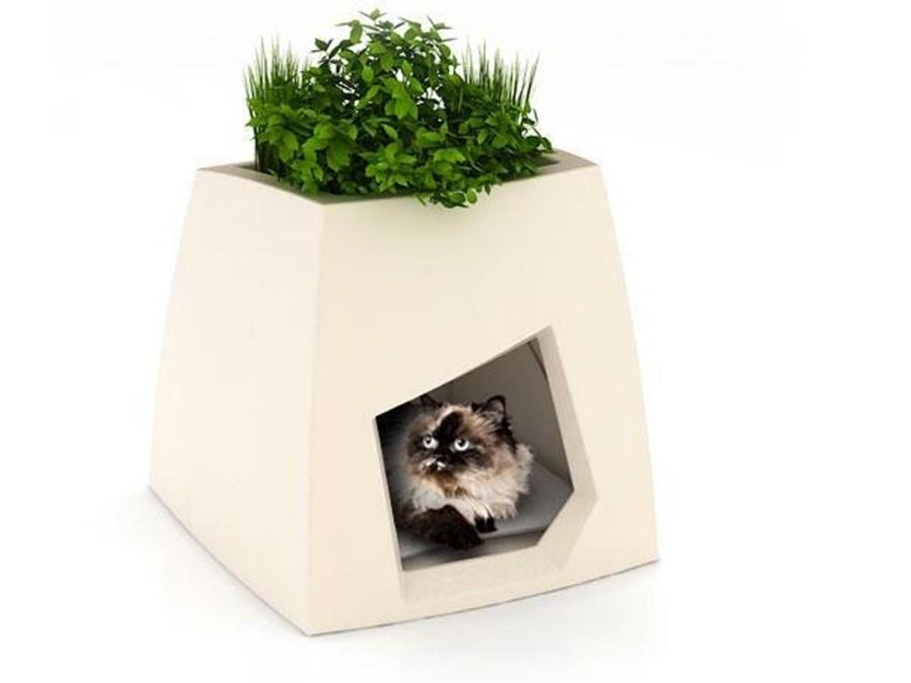 Дизайн кошачьего домика