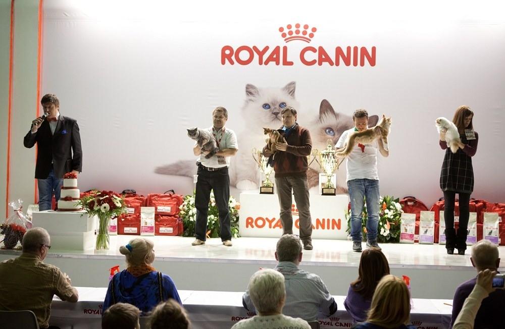 Гран-при RoyalCanin