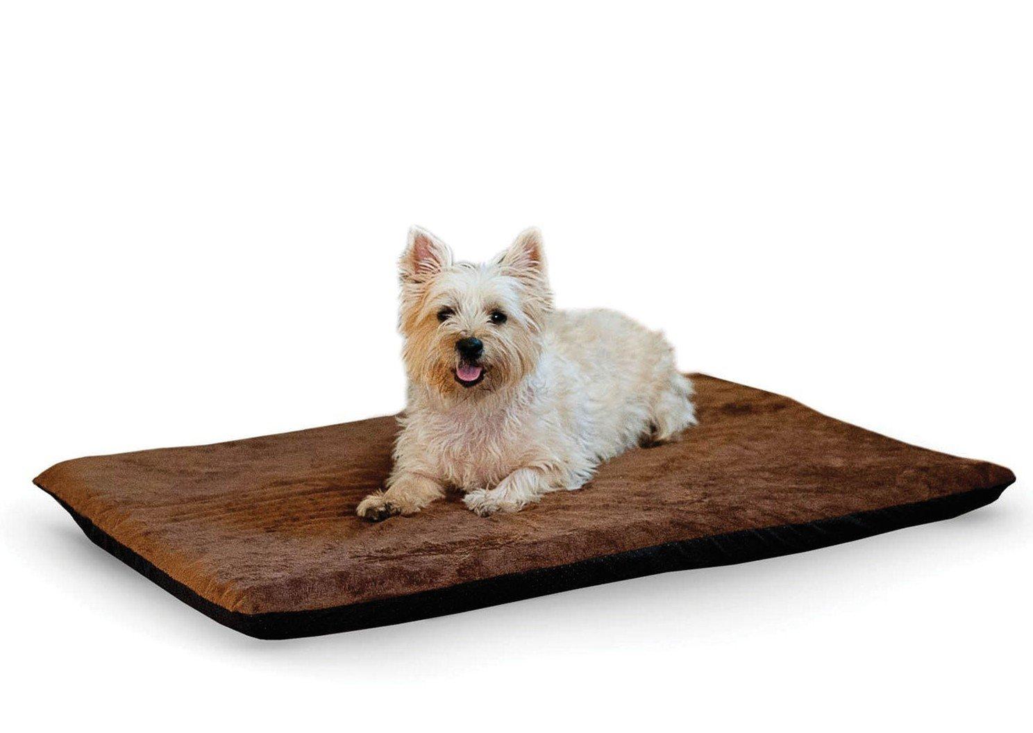 Собака на лежаке