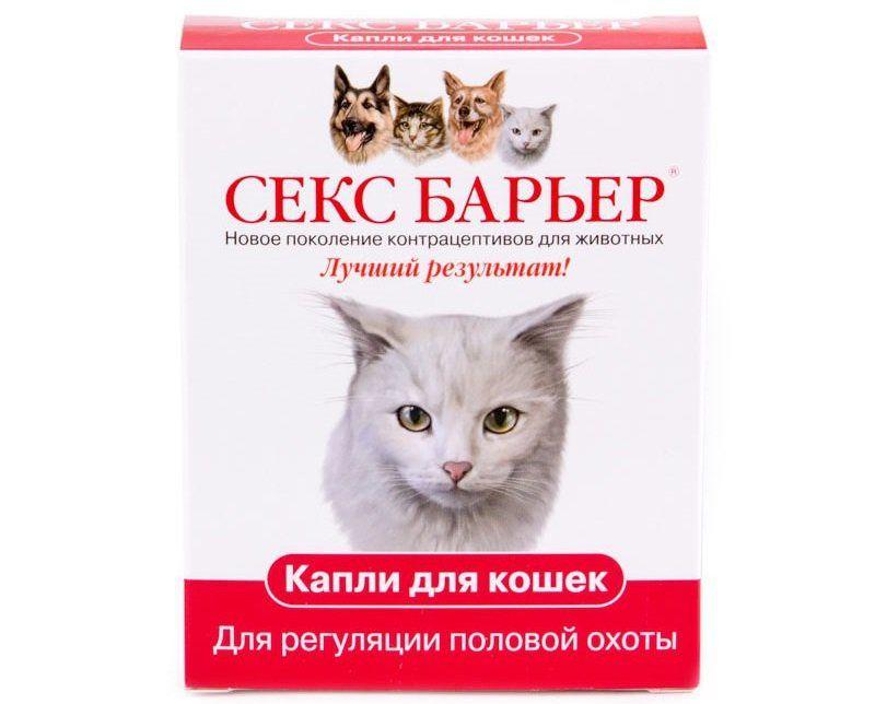 Предотвратить течку у кошки поможет Секс-барьер