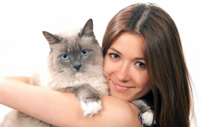 Обязательно убедитесь, что новые владельцы не выставят кота за дверь