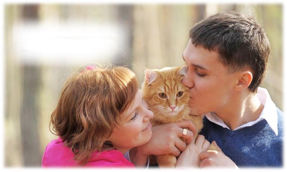 Близкий человек будет относиться к вашей кошке с любовью, вниманием