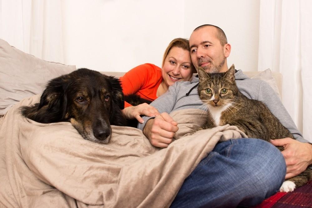 Если у знакомых уже есть домашний любимец, познакомьте ваших животных заранее