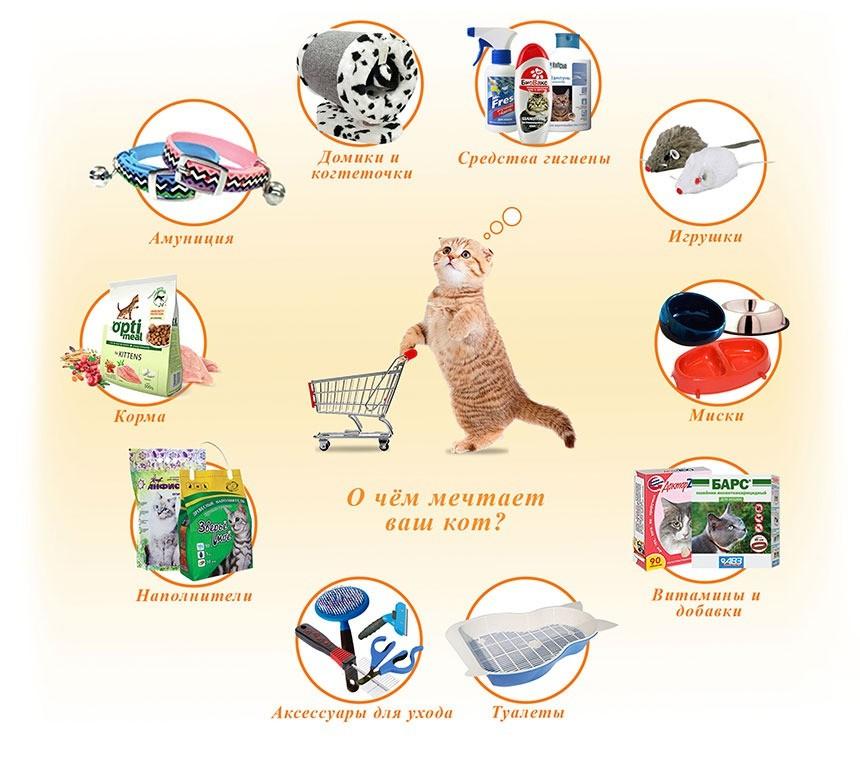 При разведении кошек следует обзавестись некоторыми товарами