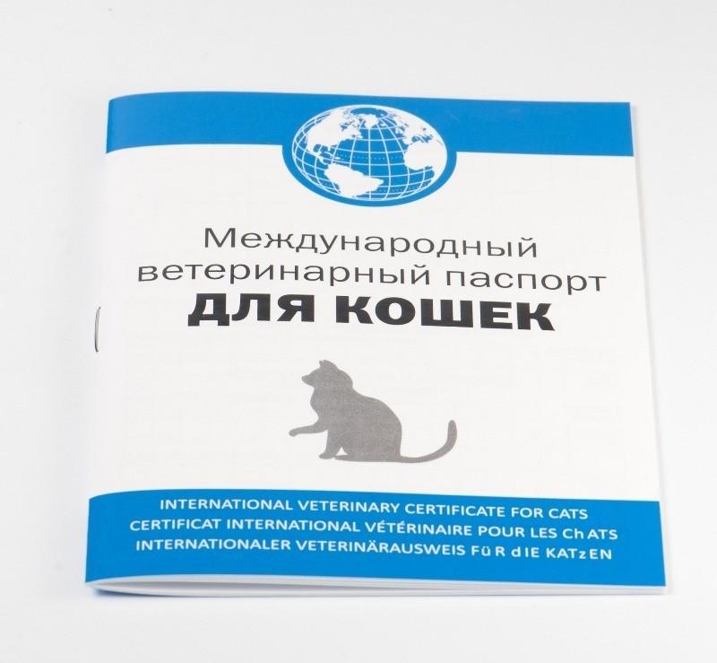 Как сделать документы животному