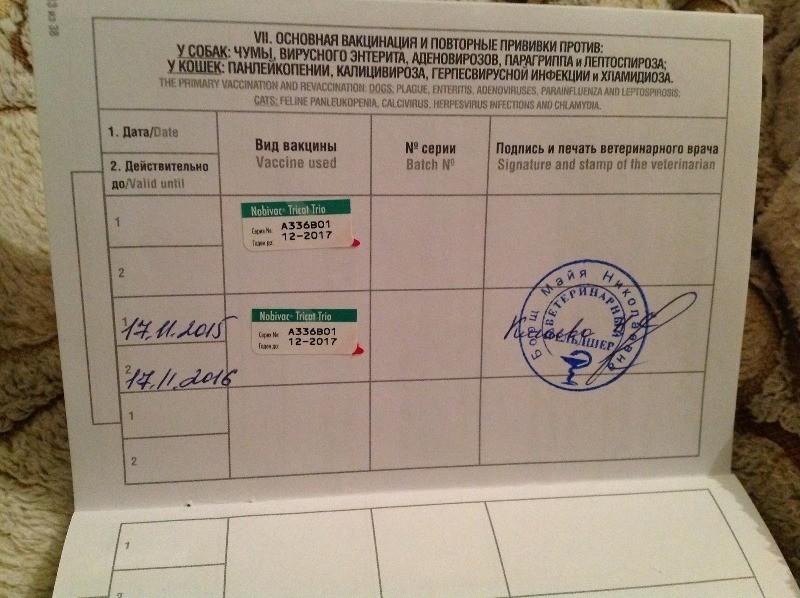 На страницах паспорта должны быть проставлены печати ветеринарной клиники