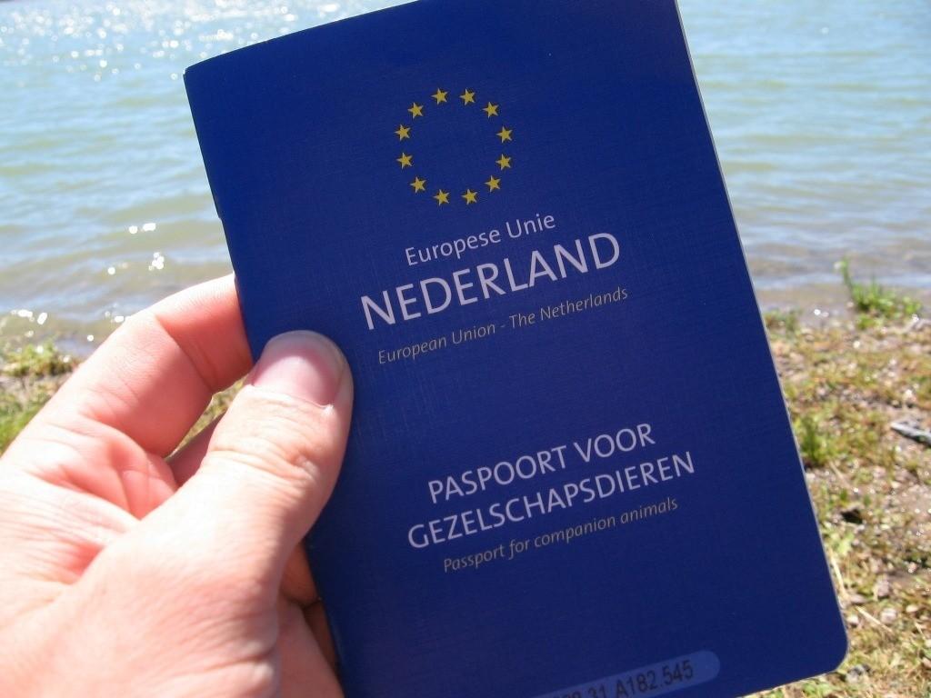 Папорт нужен для того, чтобы оформить животное на вывоз за границу