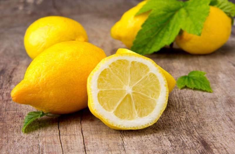 Лимон котам нравится меньше всего за счет слишком резкого и острого запаха