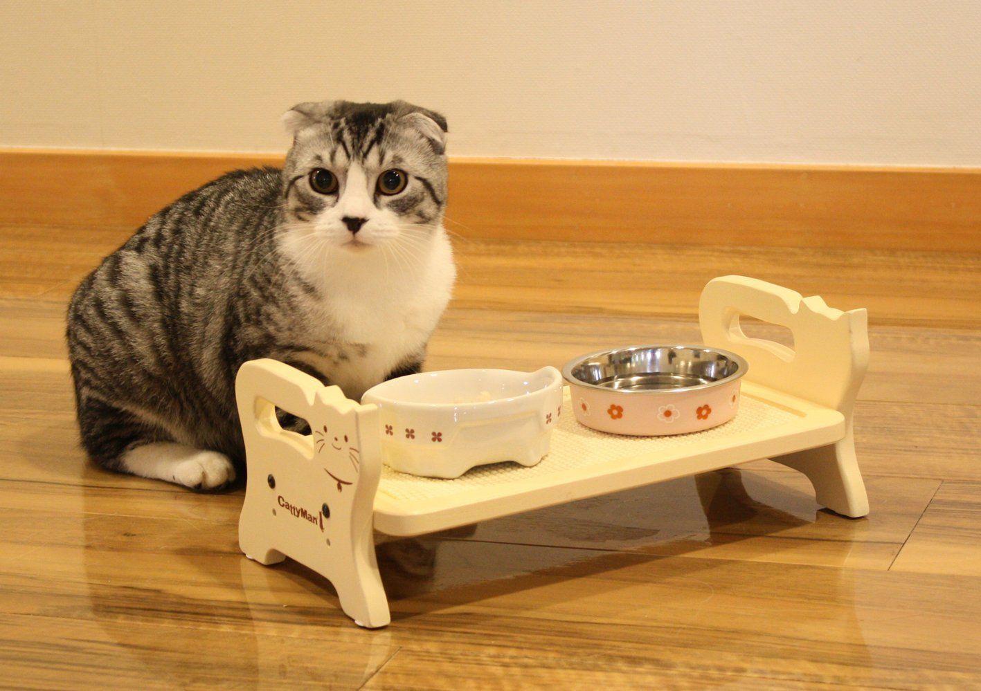 Кошка может перестать есть из-за низкого качества посуды