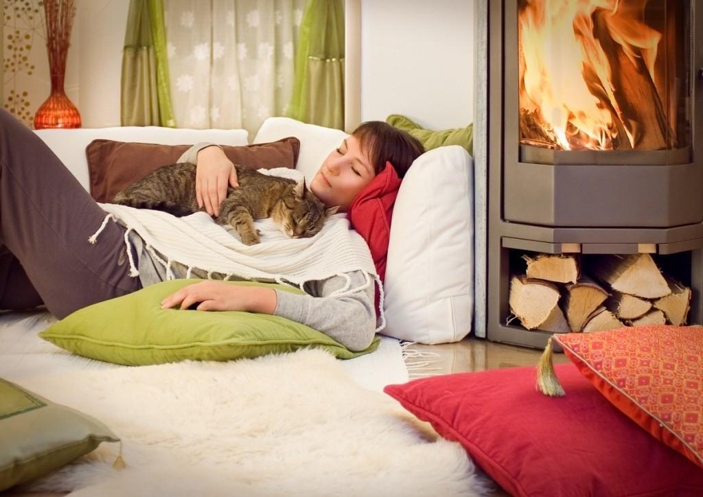 Кошка повышает иммунный статус человека