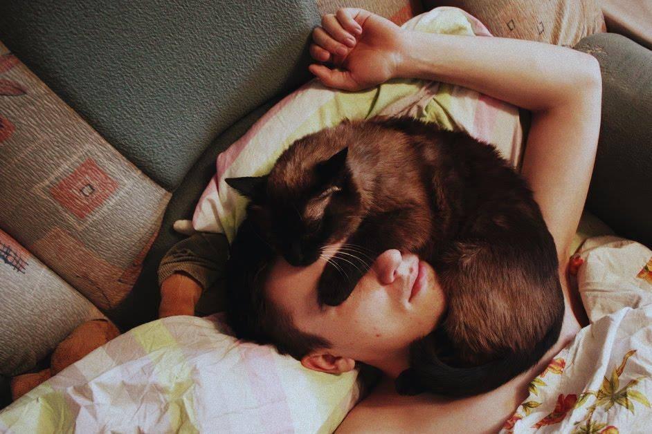 Кошки очень часто ложатся на то место, которое у человека болит