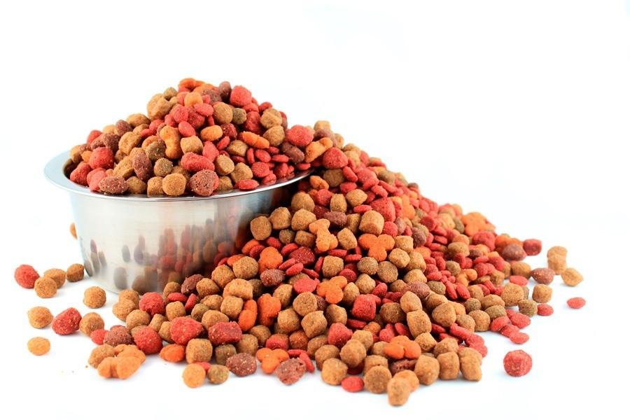 Сухой корм нельзя чередовать с натуральной едой или влажными кормами