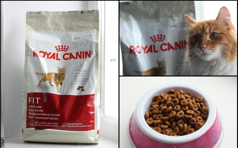 Популярность продукции бренда Rоyal Canin объясняется доступностью ее стоимости и широким разнообразием