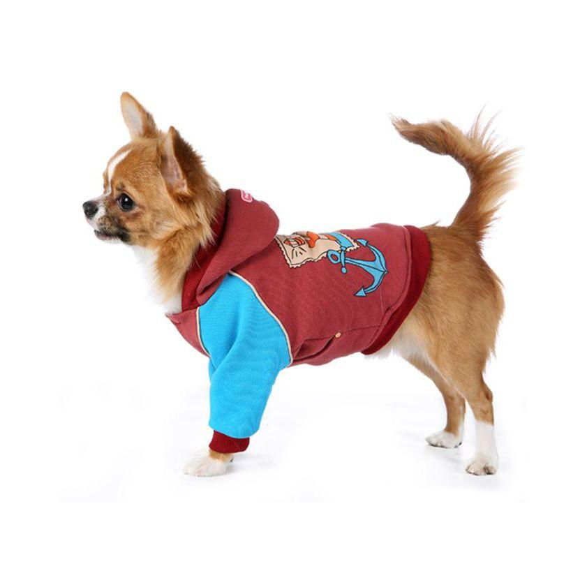 Мелкая собака