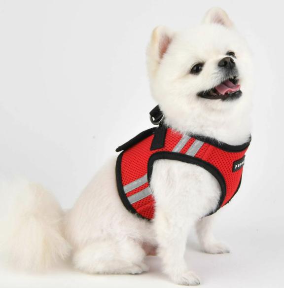 Шлейка-жилетка для собаки